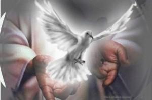 Espiritu Santo y la Iglesia